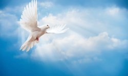 Sunday School Lesson 22 – The Holy Spirit