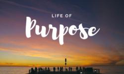 Sunday School Lesson 30 – LIVING A PURPOSE DRIVEN LIFE