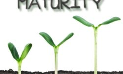 Sunday School Lesson 23 – Spiritual Maturity